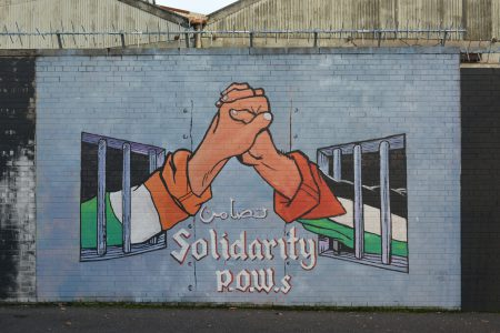Two hands reaching out from cells to grasp each other one. One sleeve displays the Irish tricolour, the other sleeve displays the Palestinian flag.