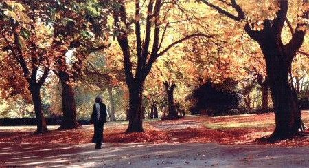 Clare Short walking in Handsworth Park, Birmingham amongst autumnal trees.